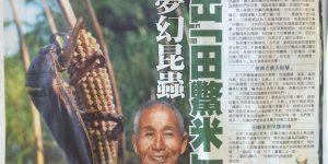 守護夢幻昆蟲種出「田鱉米」